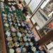 茨城多肉狩り遠征・タニラーの聖地☆四国造園でおらいさん&パクさん苗